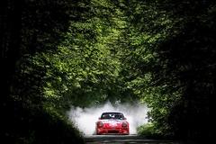2014 Rally Saturnus 2014 (SLO)